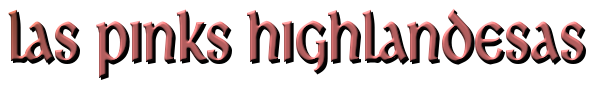 """Serie """"En los brazos del Highlander"""" (01-03) – Iris Vermeil (Rom) 5279847"""