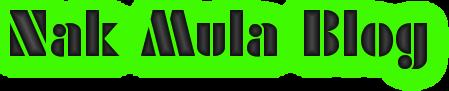 Nak Mula Blog