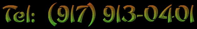 Tel:  (917) 913-0401