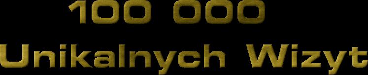 100 000<br /> Unikalnych Wizyt