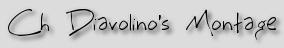 Ch Diavolino's Montage