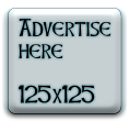 Budget Advertise On This Blog