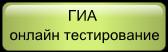 ГИА онлайн тестирование