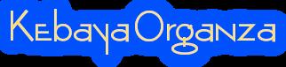 Kebaya Organza