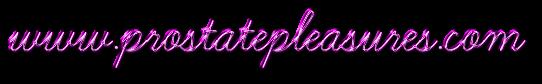 www.prostatepleasures.com