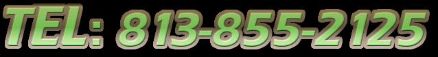 TEL: 813-855-2125