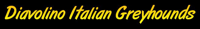 Diavolino Italian Greyhounds