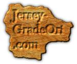 Jersey- GradeOri .com