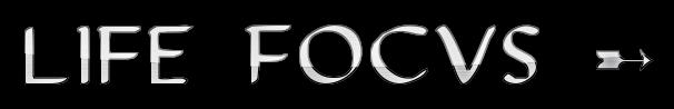 Life Focus ➸