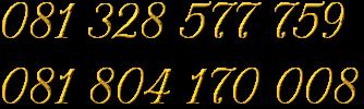 081 328 577 759 081 804 170 008
