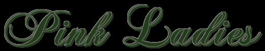 Lady Marian, Lady's 04 – Jane Mackenna (Rom) 5319112
