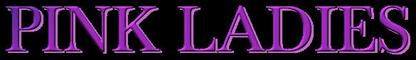 Desencuentros - Lorena Fuentes (Rom) 5291716