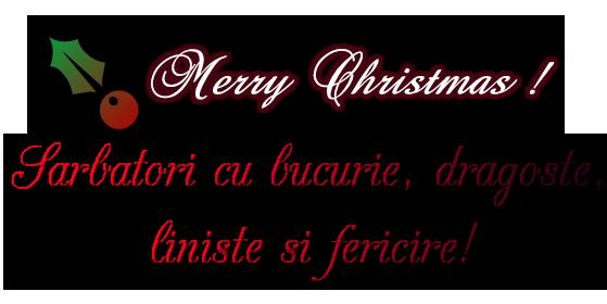 Sarbatori cu bucurie, dragoste,         liniste si fericire!   Merry Christmas !