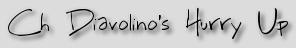 Ch Diavolino's Hurry Up