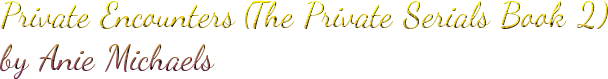 Private Encounters (The Private Serials Book 2) by Anie Michaels