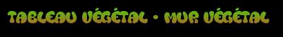 tableau végétal - mur végétal