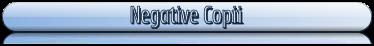 Negative C</a><br /></span></h2><span class=