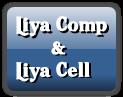 Liya Comp