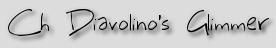 Ch Diavolino's Glimmer