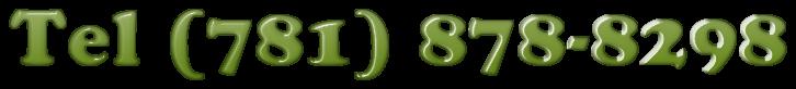 Tel (781) 878-8298