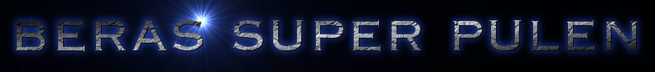 BERAS SUPER PULEN