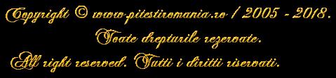 Copyright © www.pitestiromania.ro / 2005 - 2018.                  Toate drepturile rezervate. All right reserved. Tutti i diritti riservati.