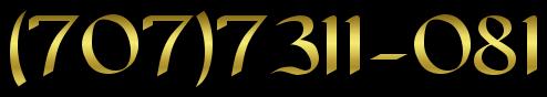 (707)7311-081