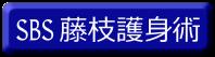 SBS 藤枝護身術
