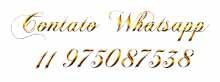 Contato Whatsapp     11 975087538