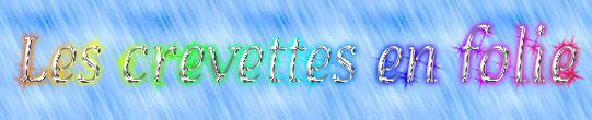 LES CREVETTES EN FOLIE 2076160