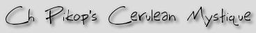Ch Pikop's Cerulean Mystique