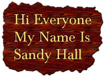 Hi Everyone My Name Is Sandy Hall