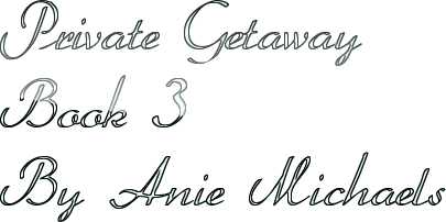 Private Getaway Book 3 By Anie Michaels