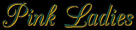 El regalo de Lyon, Novias de las Highlands 0,2 – Tanya Anne Crosby (Rom)  5157192