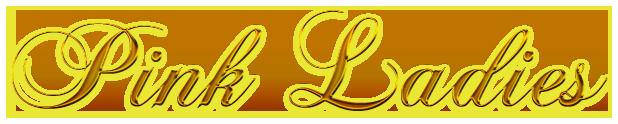 Lord Gabriel, el secreto de la condesa - Jane MacKenna (Rom) 5371239