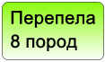 ��������  8 �����