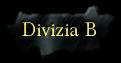 Divizia B