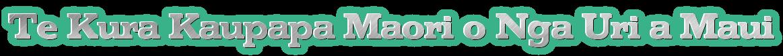 Te Kura Kaupapa Maori o Nga Uri a Maui