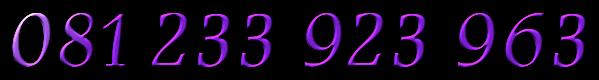 081335382078