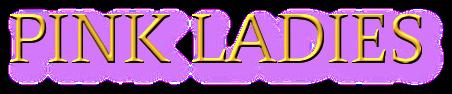 Presente. Pasado… Tú – Ana Idam (Rom)  5108694