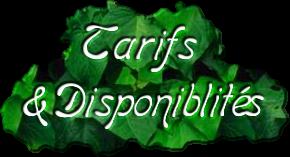 Tarifs& Disponiblités