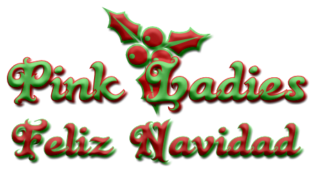 Amigos de más y otros desatres navideños – Olivia Kiss (Rom)  5363947